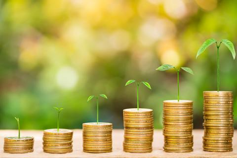 PHOTO: Thinkstock.com. Tree growing on one dollar coins arranged as a graph on wood table with natural bokeh background